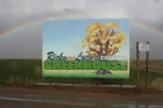 Ricky_lucys_greenhouse_sign